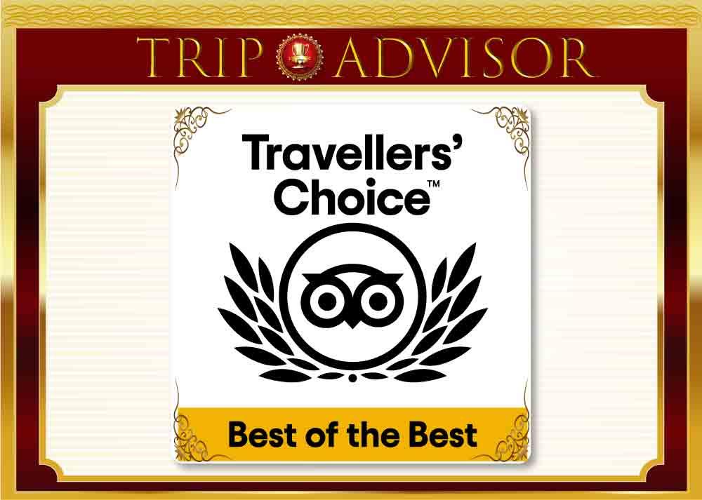 tripadvisor best of the best
