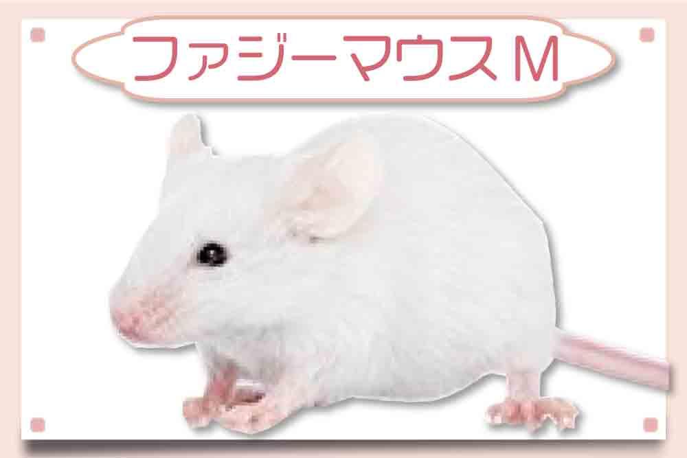 ファジーマウスM|冷凍マウス